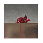 10 idées de cadeaux pas chers pour Noël